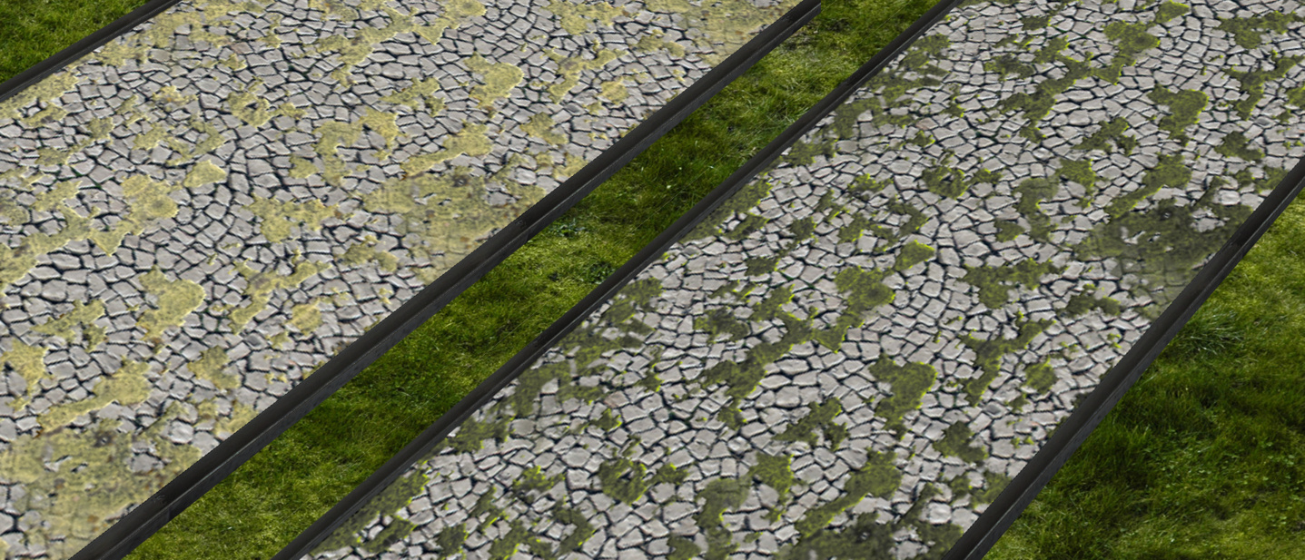 Wegeset2_Moosweg.jpg